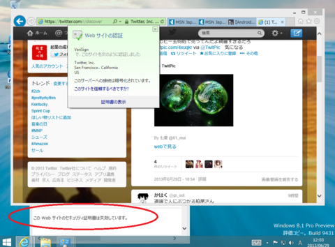 Windows 8.1 PreviewでGoogle検索とtwitter証明書エラー .png